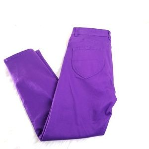 Coldwater Creek Purple Skinny Pants Size 4 A33